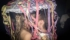 photo-mariage-laurent-lelarge-05042014-23