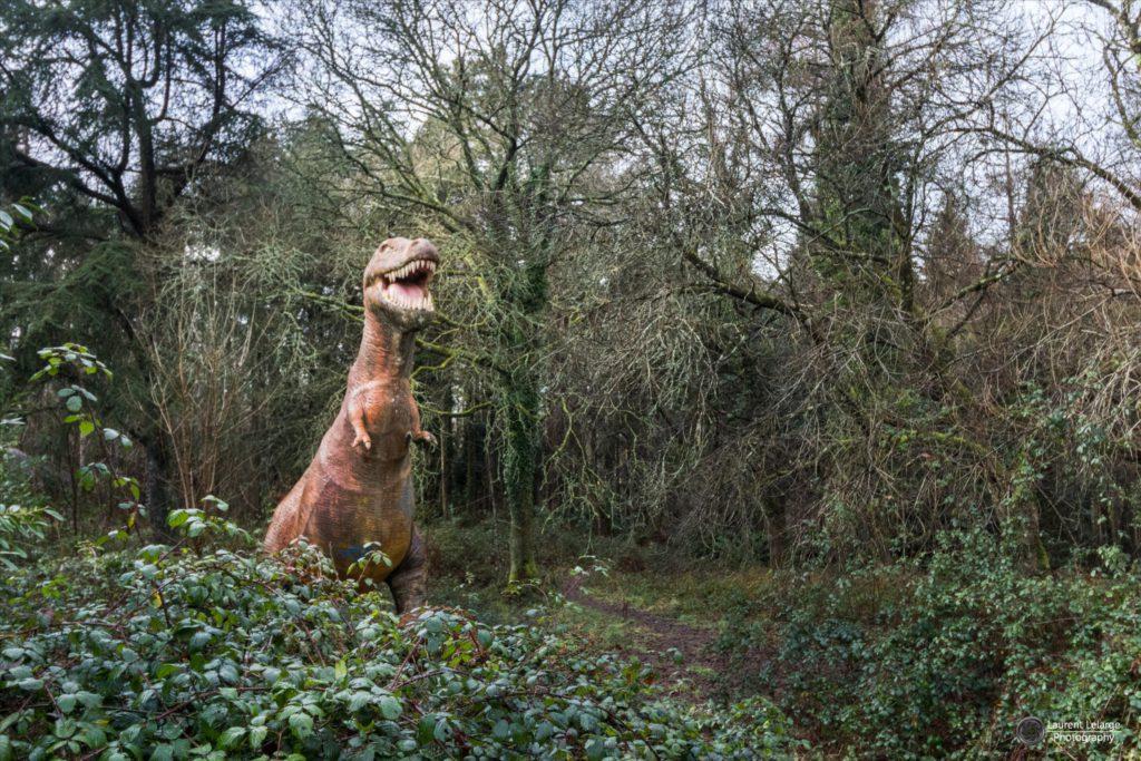 Photos Urbex Dinosaored Park (2)