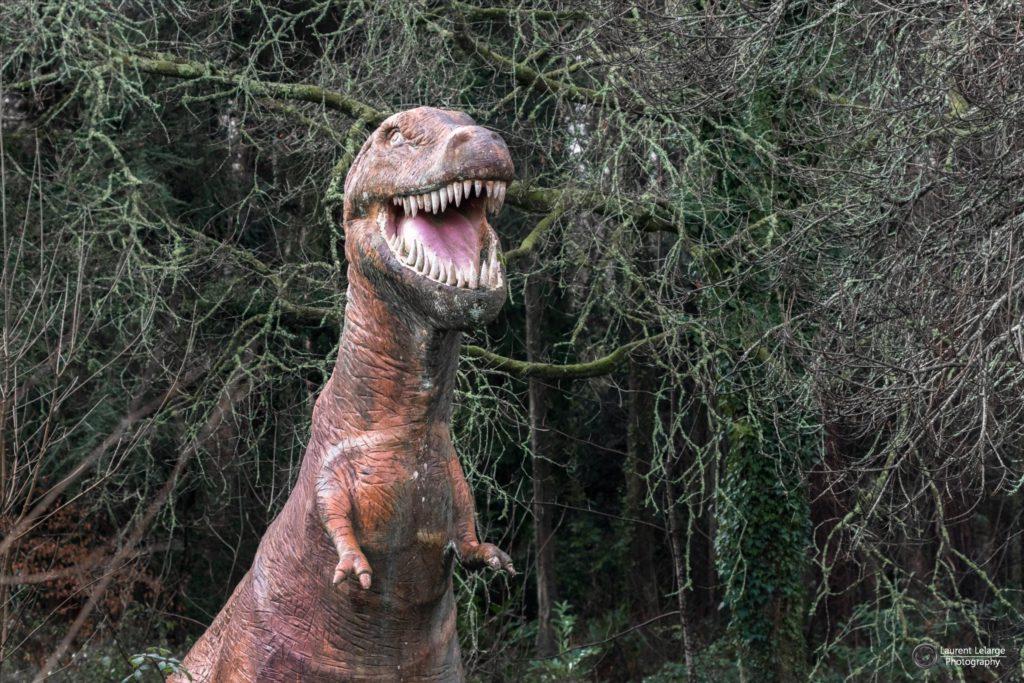 Photos Urbex Dinosaored Park (3)
