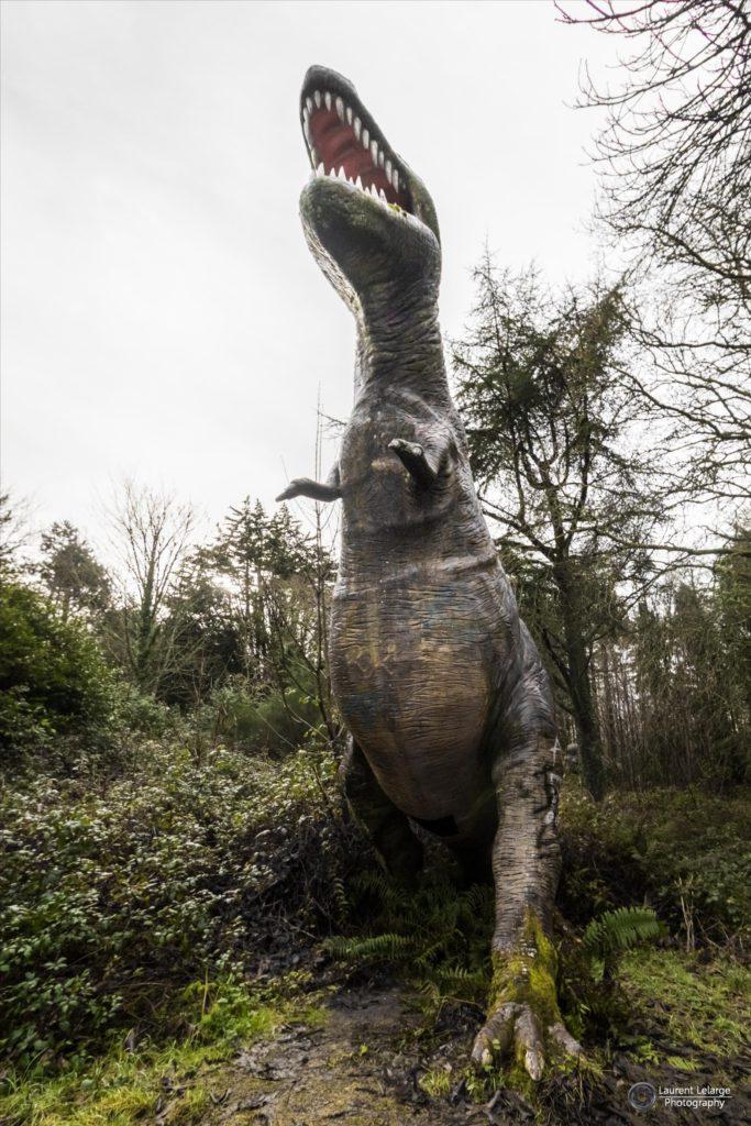 Photos Urbex Dinosaored Park (5)